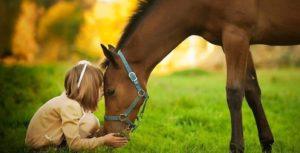 Una bambina accarezza e bacia il muso di un cavallo.